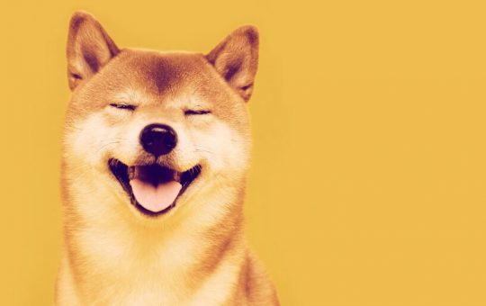 Shiba Inu Up 385% in a Week, Becomes 12th Largest Cryptocurrency