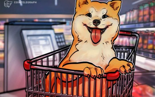 Shiba Inu is now a top-20 cryptocurrency with SHIB price soaring 300% in 9 days